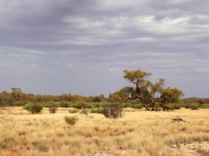 Some of the more isolated areas in Australia are found in the north and the centre of the Country - Image from AussieStock